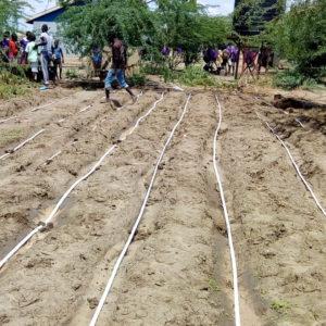 RDI GrowStream installed in small farm