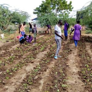RDI GrowStream installed in small farm in Kenya