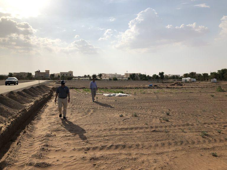 2020 RDI farm in Abu Dhabi